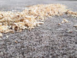 Saw dust on ground